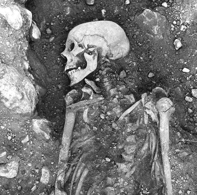 Viking skeleton found in Sweden