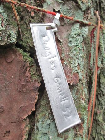 A close up photo of a tree trunk. A small silver metal tag is attached to the trunk with yarn. The tag reads Douglas Gowell '52.