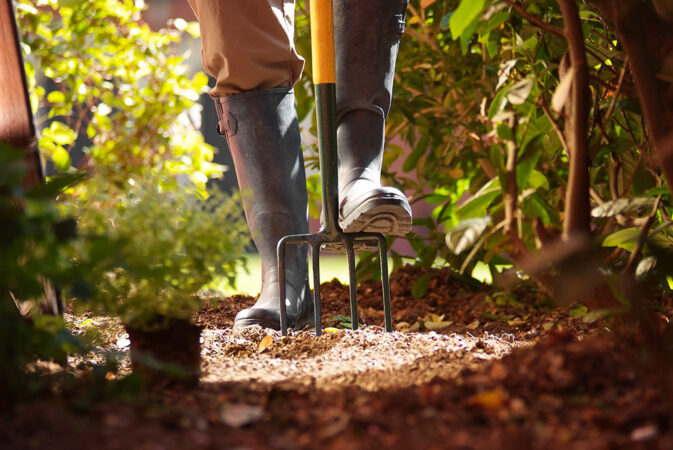 a photo of a foot pushing a garden rake into garden soil