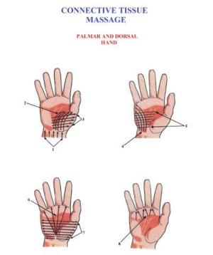 Science of Massage Institute » Set 2 Protocol of Connective Tissue Massage