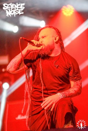 12. Decapitated_Sábado 10.08.2019_XIV Leyendas del Rock (2)