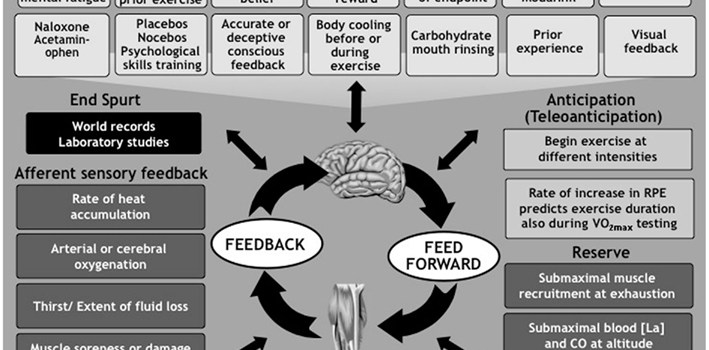Neuro-Doping: The intersection of neuroscience and performance