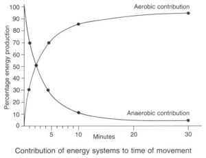 A Message to Speed/Power/Conditioning Coaches about Endurance Development – Science of Running 2