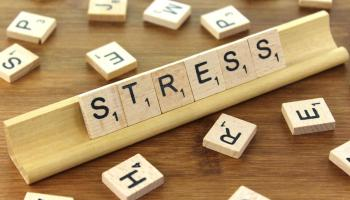 Stress and Adaptation: Everything You Need to Know | Science