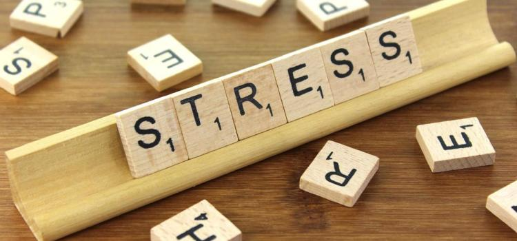 The Origins of Stress- Understanding our bodies response