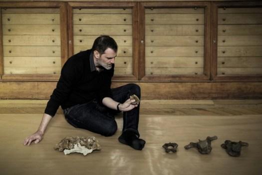 Le paléontologue Ronan Allain, le 12 mars 2018 au Muséum d'Histoire naturelle (AFP - PHILIPPE LOPEZ)