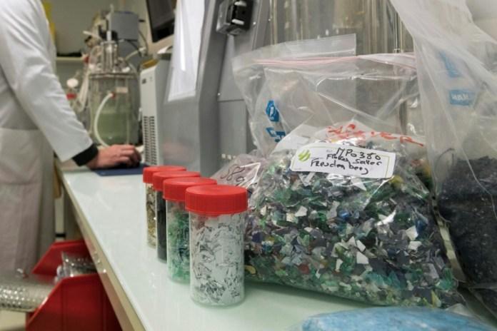Des échantillons de plastique recyclable, en laboratoire, dans les locaux de la société Carbios à Saint-Beauzire (Puy-de-Dôme), le 1er avril 2019 (AFP/Archives - Thierry Zoccolan)
