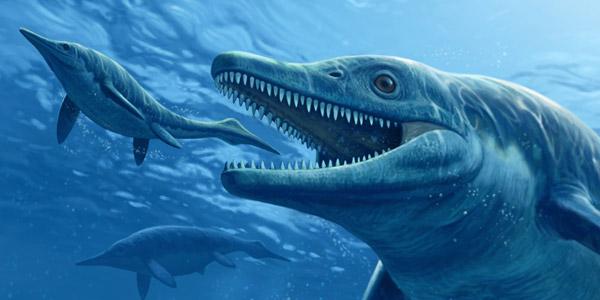 zeemonster. Afbeelding: Raul Martin © 2013 National Geographic Magazine, met toestemming gebruikt