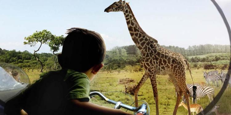 Fietsen rond giraffen op een fiets die omringd wordt door spiegels. Afbeelding: BIG.