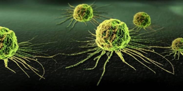 rsz_kankercel