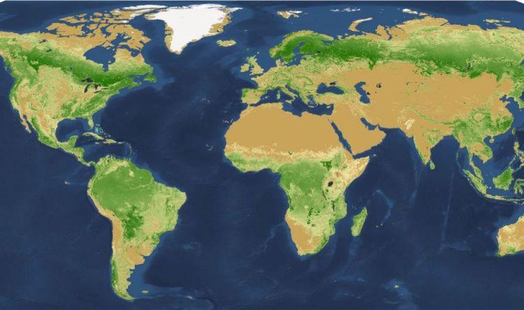 Op deze kaart zijn alle bomen te zien.