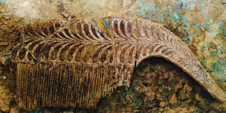 Eén van de zes ivoren kammen in het graf. Afbeelding: University of Cincinnati / Pylos Excavations.