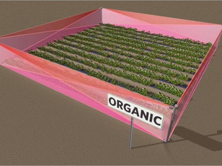 Gewassen worden beschermd door een virtueel hek. Piepkleine indringers worden tactisch uitgeschakeld.