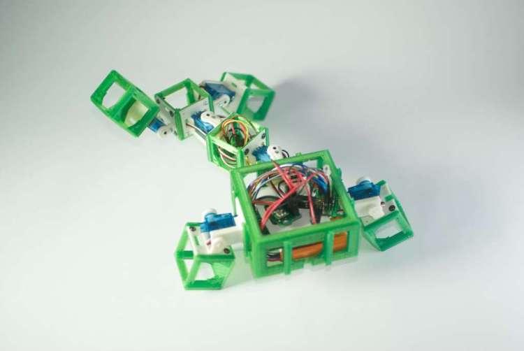 Hier zie je één van de robot-ouders. De robot heeft met een beetje fantasie de vorm van een gekko. In zijn 'hoofd' zitten de CPU, accu en lichtsensor.