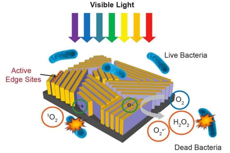Een schematische tekening van het apparaatje. Afbeelding: C. Liu et al., Nature Nanotechnology.