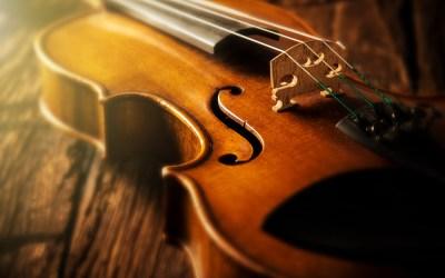 Stradivari e l'evoluzione delle specie