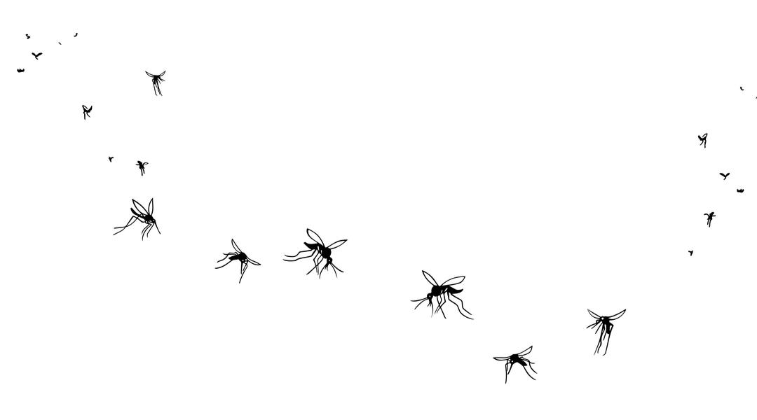 Le zanzare preferiscono l'estate
