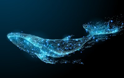 Balene vaccinate