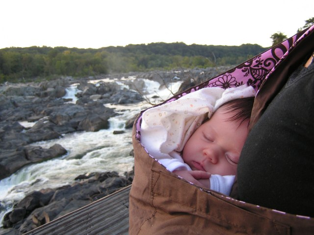 Asleep in the Baby Sling