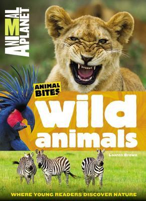 Wild Animals - Last Minute Gifts for Kids