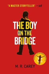 Book cover for The Boy on the Bridge