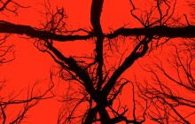 SDCC 2016: BLAIR WITCH Trailer