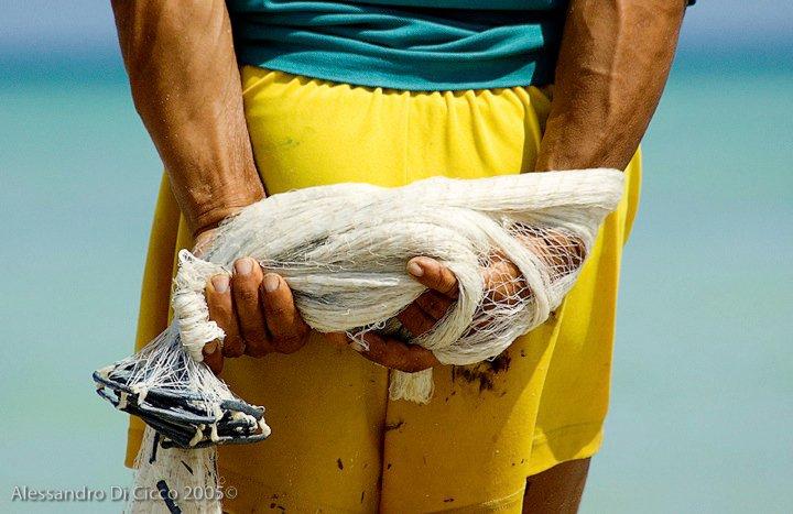 mani di un pescatore - fisherman's hands