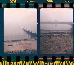 fotogramma frame