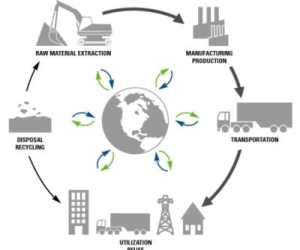 Answered: Your Most Burning Questions About Cycle View of Supply Chain