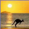 Australian Start Up