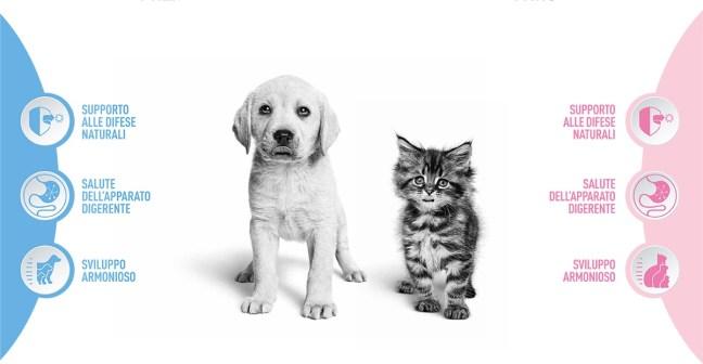 concorso birth and growth Concorso Royal Canin Birth & Growth: vinci 1 anno di alimentazione per il tuo amico a 4 zampe