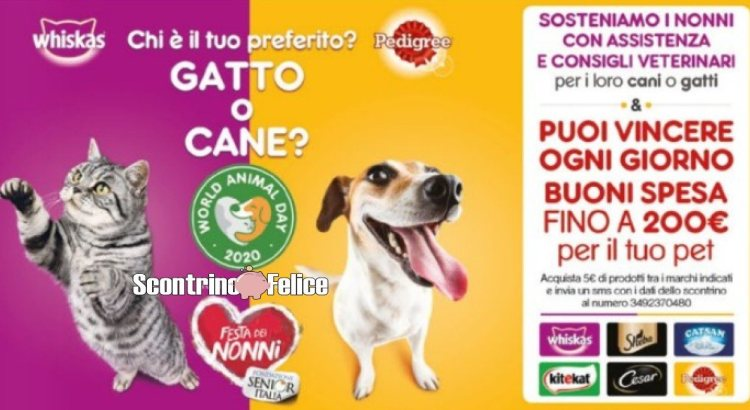 Concorso Whiskas Sheba Cesar Pedigree Catsan Kitekat World Animal Day 2020 Festa dei Nonni