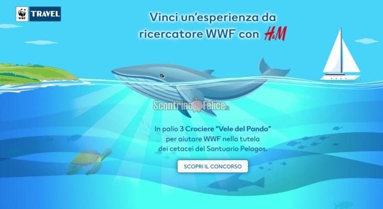 Con H&M e WWF vinci una Crociera Vele del Panda