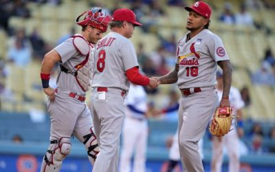 Bernie's Bird Bytes: Carlos Martinez, Problem Or Solution? Plus Many Notes On All Things Cardinals.