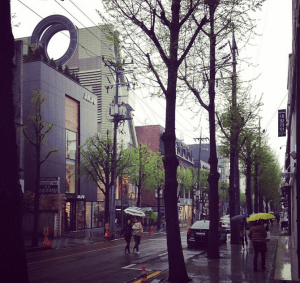 One of the fantastic neighborhoods in Seoul we visited. For shopping purposes, of course.