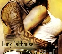 A Bit of Rough – Lucy Felthouse