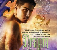 A Nix PNR Review – Dragon Bound – Thea Harrison (5 Stars)