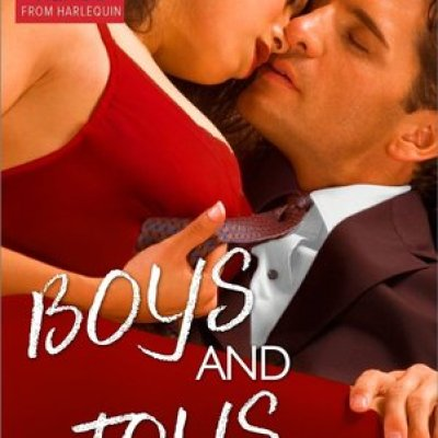 Review Post : I just couldn't get into Boys and Toys by Cara Lockwood