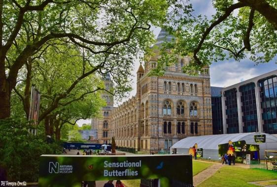 Museo di Storia Naturale - Londra, Inghilterra