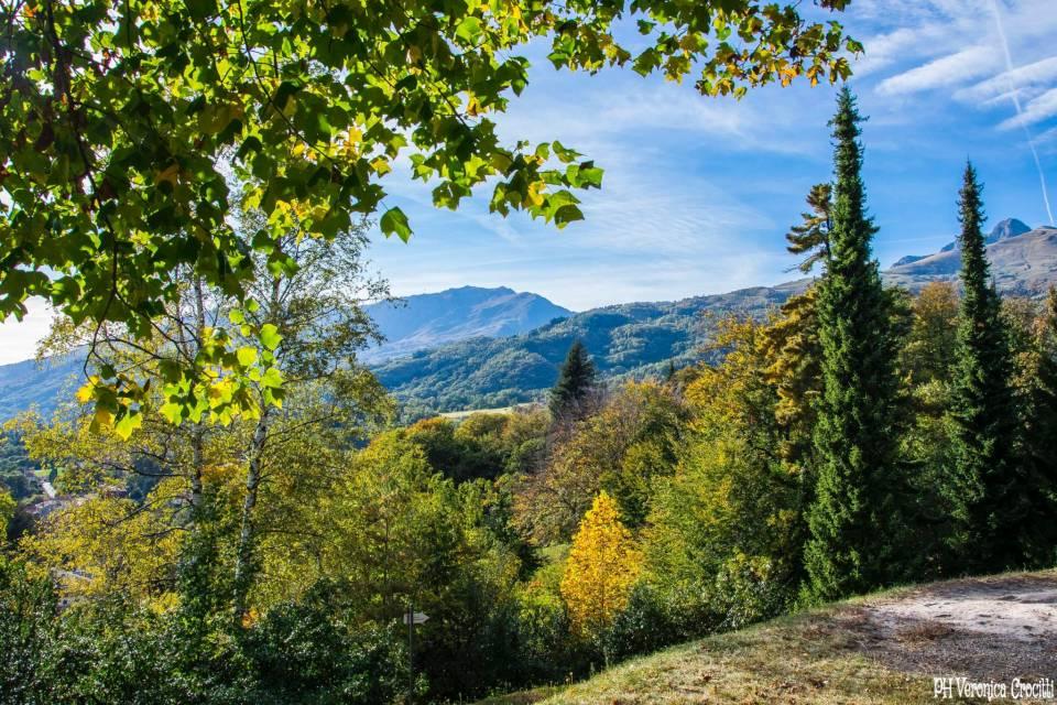 Parco della Burcina, Biella (Piemonte, Italia)_9