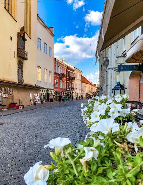 Via Pilies - Città Vecchia, Vilnius - Lituania