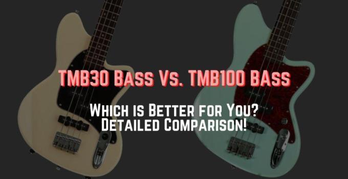 ibanez tmb30 vs tmb100
