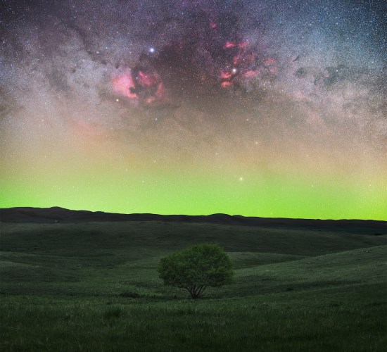 Astrophotography in Saskatchewan. The Cygnus region towers over a lone tree
