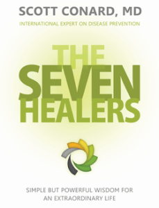 The Seven Healers eBook