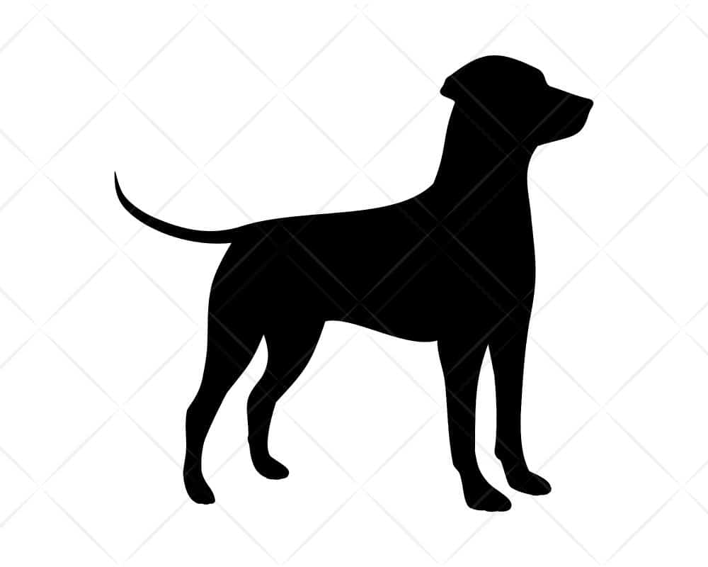 Download 46+ Free Svg Cut Files Dogs Pics Free SVG files ...