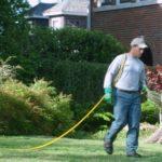 man watering grass