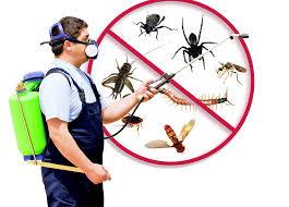 pest control personel