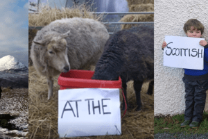 2021 Scottish Rural Parliament – registration open!