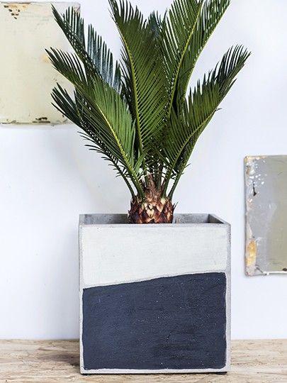 Vasi moderni da interno dei migliori brand al mondo: Marie Arty Vaso Quadrato Vasi In Cemento Da Esterno O Da Interno Serax