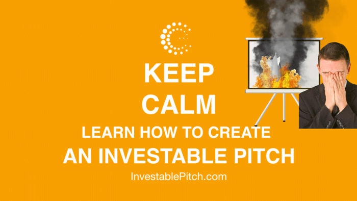 Body Language And The Investor Pitch